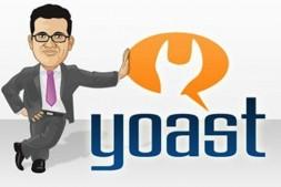 最新Yoast WordPress SEO Premium WordPress外贸 SEO插件包升级